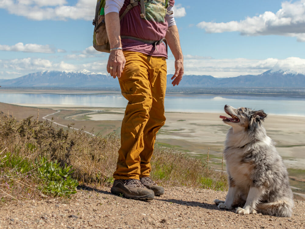 Owner hiking with dog